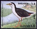 Cl: White-breasted Waterhen (Amaurornis phoenicurus) SG 768 (2000) 125 [1/7]