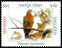 Cl: Orange-breasted Pigeon (Treron bicincta) SG 1080 (2011)  [10/28]