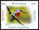 Cl: Blue-eared Kingfisher (Alcedo meninting) SG 1077 (2011)  [10/28]