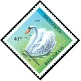 Cl: Mute Swan (Cygnus olor)(Repeat for this country)  SG 70 (1993) 40