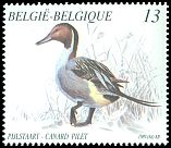 Cl: Northern Pintail (Anas acuta) <<Pijlstaart/Canard pilet>>  SG 2995 (1989) 150