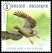 Cl: Greylag Goose (Anser anser) <<Grauwe Gans/Oie cendr&eacute;e>> (Repeat for this country)  SG 4626a (2015)  [9/31]