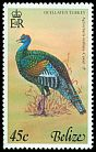 Cl: Ocellated Turkey (Meleagris ocellata) SG 456 (1977) 175