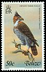 Cl: Ornate Hawk-Eagle (Spizaetus ornatus) SG 565 (1980) 800