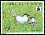 Cl: Roseate Tern (Sterna dougallii)(Repeat for this country)  SG 1107 (1989) 110