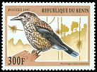 Cl: Eurasian Nutcracker (Nucifraga caryocatactes)(Out of range)  SG 1656 (1997) 160
