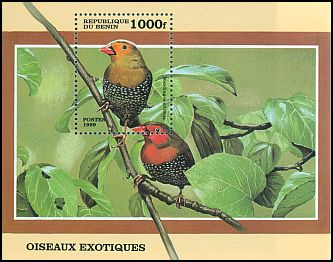 Cl: Green-backed Twinspot (Mandingoa nitidula) SG 1778 (1999) 475