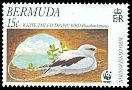Cl: White-tailed Tropicbird (Phaethon lepturus)(Repeat for this country)  SG 852 (2001) 90