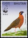 Cl: Satyr Tragopan (Tragopan satyra)(Endemic or near-endemic)  SG 1738c (2003)  [2/9]