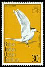 Cl: Great Crested Tern (Sterna bergii) SG 66 (1975) 125