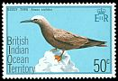 Cl: Brown Noddy (Anous stolidus) SG 68 (1975) 125