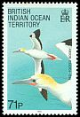 Cl: Red-footed Booby (Sula sula) SG 99 (1990) 225