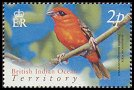 Cl: Red Fody (Foudia madagascariensis)(Repeat for this country)  SG 296 (2004) 20 [3/2]