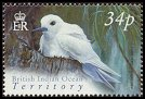 Cl: White Tern (Gygis alba)(Repeat for this country)  SG 300 (2004) 100 [3/2]