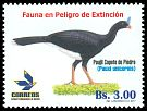 Cl: Horned Curassow (Pauxi unicornis) <<Paujil Copete de Piedra>> (Endemic or near-endemic)  new (2017)  [11/38]