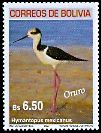 Cl: Black-necked Stilt (Himantopus mexicanus) SG 1772 (2007) 350 [4/26]