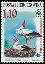 Cl: White Stork (Ciconia ciconia)(Repeat for this country)  SG 578 (1998) 150