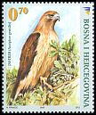 Cl: Northern Goshawk (Accipiter gentilis) <<Jastreb>>  SG 950 (2008) 180 [6/2]