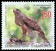 Cl: Northern Goshawk (Accipiter gentilis) SG 551 (2011)  [5/42]
