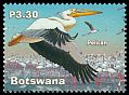 Cl: Great White Pelican (Pelecanus onocrotalus) SG 998 (2002) 190