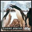 Cl: Adelie Penguin (Pygoscelis adeliae)(Repeat for this country) (I do not have this stamp)  SG 561 (2011)  [7/41]