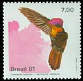 Cl: Ruby-topaz Hummingbird (Chrysolampis mosquitus) <<Beija-flor-vermelho>>  SG 1895 (1981) 170