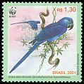 Cl: Hyacinth Macaw (Anodorhynchus hyacinthinus) <<Arara-azul-grande>> (Endemic or near-endemic)  SG 3207a (2001) 250