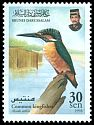 Cl: Common Kingfisher (Alcedo atthis) SG 603 (1998) 125