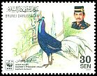 Cl: Bulwer's Pheasant (Lophura bulweri) <<Ayam Hutan>> (Endemic or near-endemic)  SG 678 (2001) 110 [10/30]