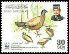 Cl: Bulwer's Pheasant (Lophura bulweri) <<Ayam Hutan>> (Endemic or near-endemic)  SG 679 (2001) 110 [10/30]