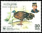 Cl: Bulwer's Pheasant (Lophura bulweri) <<Ayam Hutan>> (Endemic or near-endemic)  SG 680 (2001) 110 [10/30]