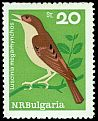 Cl: Common Nightingale (Luscinia megarhynchos) SG 1524 (1965) 375