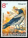 Cl: Hooded Crow (Corvus cornix) SG 3516 (1988) 40