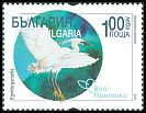 Cl: Little Egret (Egretta garzetta) new (2019)  [11/54]