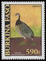Cl: Double-spurred Francolin (Francolinus bicalcaratus) new (2001)  [2/8]