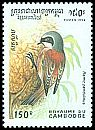 Cl: Eurasian Penduline-Tit (Remiz pendulinus)(Out of range)  SG 1414 (1994) 70 [11/41]