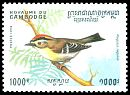 Cl: Goldcrest (Regulus regulus)(Out of range)  SG 1418 (1994) 500 [11/41]