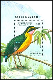 Cl: African Pitta (Pitta angolensis)(Out of range)  SG 1419 (1994) 675 [11/41]