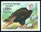 Cl: Bald Eagle (Haliaeetus leucocephalus)(Out of range)  SG 1942 (1999) 500