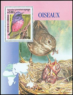 Cl: Rufous-bellied Niltava (Niltava sundara)(Out of range and no other stamp)  SG 2086 (2000) 450 [11/15]
