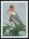 Cl: Greater Adjutant (Leptoptilos dubius) SG 2543 (2018)  [11/49]