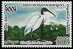 Cl: Black-headed Ibis (Threskiornis melanocephalus) new (2006)  [5/44]