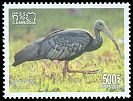 Cl: Giant Ibis (Pseudibis gigantea)(Endemic or near-endemic)  SG 2539 (2018)  [11/49]
