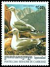 Cl: Yellow-legged Gull (Larus michahellis)(Out of range)  SG 2022 (2000) 150