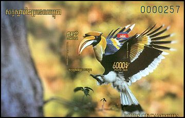 Cl: Great Hornbill (Buceros bicornis) new (2021)  [12/27]