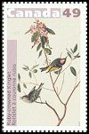 Cl: Ruby-crowned Kinglet (Regulus calendula) <<Roitelet a couronne rubis>>  SG 2274 (2004) 85 [2/27]
