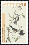 Cl: Boreal Chickadee (Poecile hudsonicus) <<Mesange a tete brune>>  SG 2277 (2004) 85 [2/27]