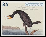 Cl: Double-crested Cormorant (Phalacrocorax auritus) <<Cormoran a aigrettes>>  SG 2344 (2005) 190 [3/44]