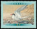 Cl: Arctic Tern (Sterna paradisaea) <<Sterne arctique>> (Repeat for this country)  SG 2059 (2001) 75