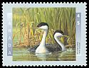 Cl: Western Grebe (Aechmophorus occidentalis) <<Grebe elegant>>  SG 1718 (1997) 125